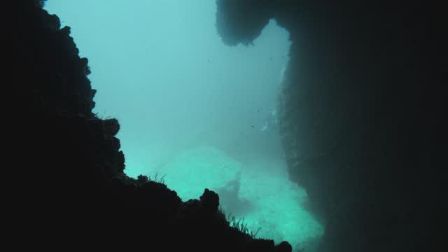 erkundung einer unterwasser-cenote in thailand - auftauchen stock-videos und b-roll-filmmaterial