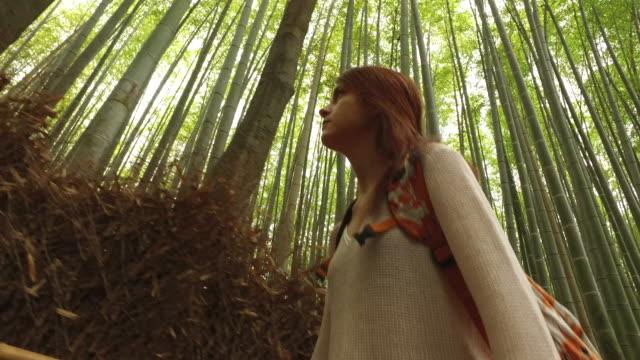 vídeos de stock e filmes b-roll de exploring arashiyama bamboo forest in kyoto - bamboo plant