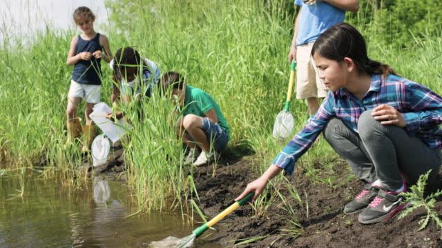 vídeos de stock e filmes b-roll de exploring at the pond - pequeno lago