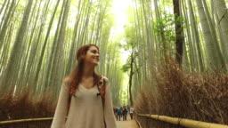 Exploring Japan