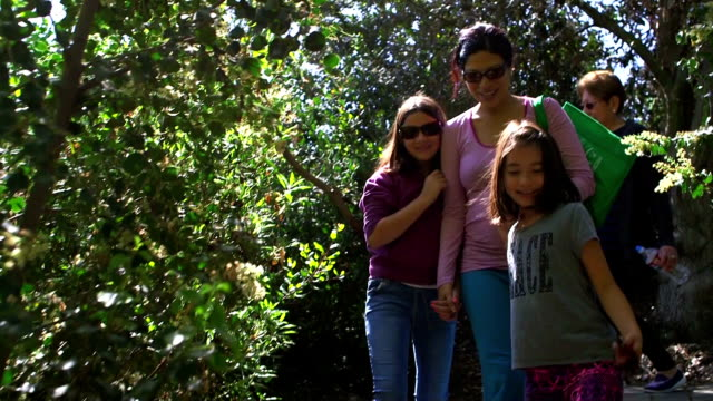 exploring together in the forest - multi generation family stock videos & royalty-free footage