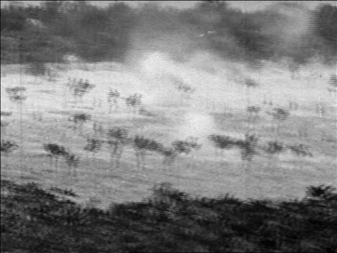 b/w 1967 explosion in field with trees in six day war / newsreel - sechstagekrieg stock-videos und b-roll-filmmaterial