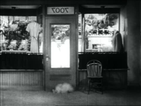b/w 1934 explosion in store after car drives past (shot from inside store) - 1934 stock videos & royalty-free footage