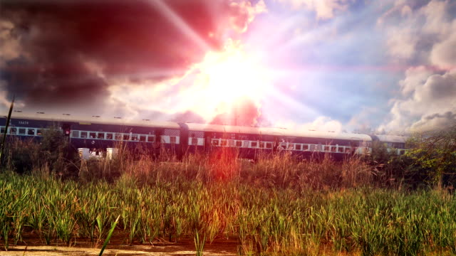 express train passing through forest under the beautiful cloudscape - approaching stock videos & royalty-free footage