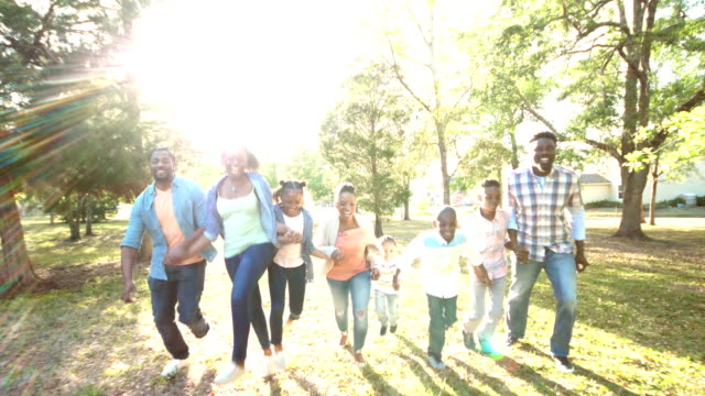 extended african-american family running, playing - large family stock videos & royalty-free footage