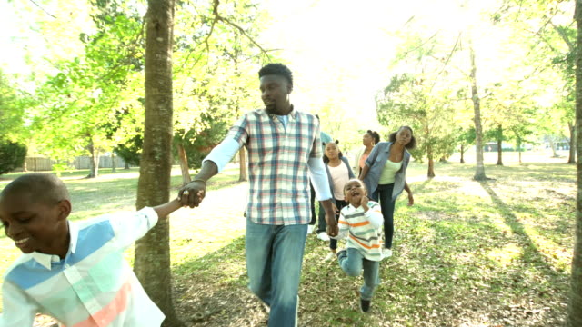 extended african-american family walking in the park - aunt stock videos & royalty-free footage