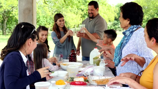extended hispanic family have picnic lunch in park on a sunny summer day - large family stock videos & royalty-free footage