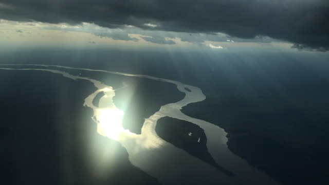 exterior aerial shot of the amazon rainforest with the sun reflecting in the river on 1st july 2019 in brazil - rainforest stock videos & royalty-free footage