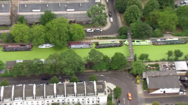 exterior aerial shots london canal covered in swamplike algae after soaring temperatures on 20 july 2018 in london united kingdom - algae stock videos & royalty-free footage
