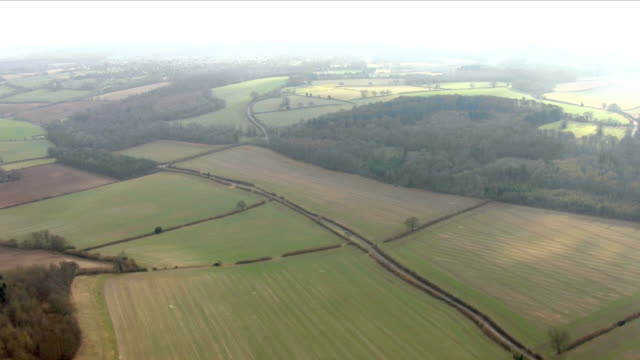vídeos y material grabado en eventos de stock de exterior aerial shots of trees in a forest and rolling hills on 22nd february 2018 in buckinghamshire united kingdom - buckinghamshire