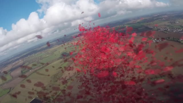 exterior aerials of dakota world war two plane dropping poppies out of the plane over the white cliffs of dover on 10 november 2019 in kent, united... - remembrance day stock videos & royalty-free footage