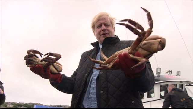 exterior and interior shots of boris johnson pm visiting a small fishing port and a cheese manufacturing plant on 22 july 2020 in orkney, scotland,... - small stock videos & royalty-free footage