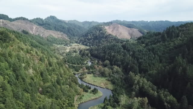 exterior drone aerial shots over mountains forests a river and farmland in the willamette valley including woodland and a river on 19 october 2019 in... - オレゴン州点の映像素材/bロール