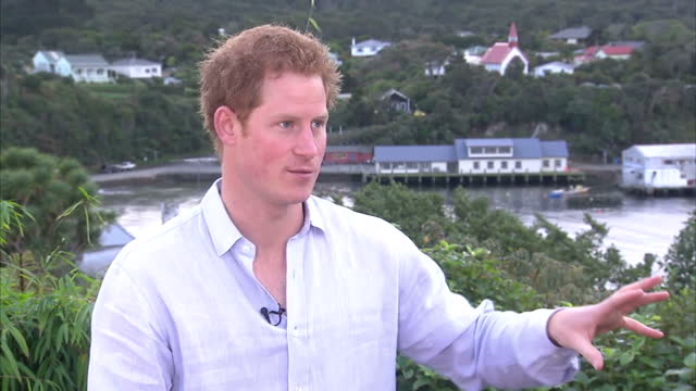vidéos et rushes de exterior interview with prince harry about his decision to leave the army on may 11, 2015 in stewart island, southland, new zealand - 2015