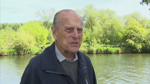 """exterior interview with prince philip, duke of edinburgh, speaking about how he came to take up the sport of carriage driving, saying """"i had been... - interview raw footage stock videos & royalty-free footage"""