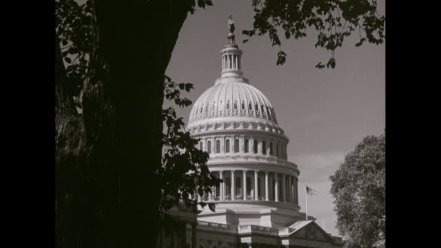 ws exterior of capitol building / washington dc, united states - governo video stock e b–roll