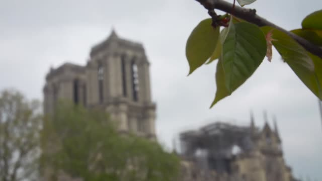 Exterior of Notre Dame cathedral in Paris after the fire