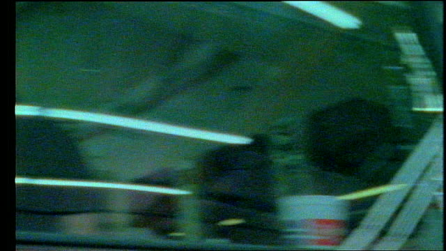 vídeos y material grabado en eventos de stock de exterior of tour bus in miami, florida - cámara movida