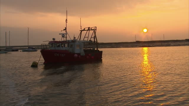 exterior point of view from boat onto sea, point of view british coast at sunset, point of view arty shots boats moored at sunset on november 19,... - aquatic organism stock videos & royalty-free footage