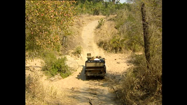 exterior point-of-view driving shots through the sabi sand game reserve aboard an open top land rover on july 25, 2002 in krugersdorp, south africa. - land rover stock videos & royalty-free footage
