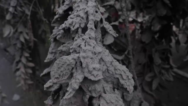 exterior shots ash covered roads after the taal volcano eruption on 15 january 2020 in laurel in batangas province philippines - taal volcano stock videos & royalty-free footage