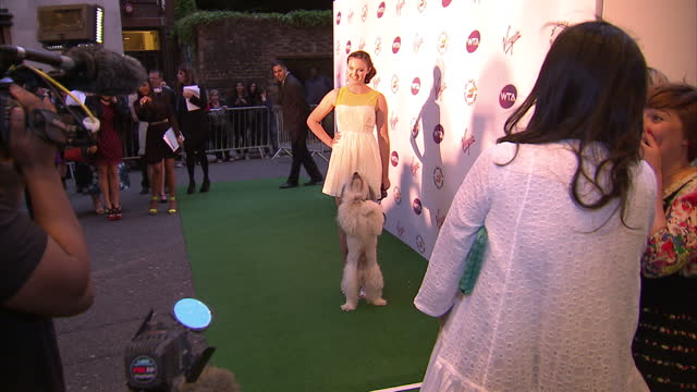 exterior shots ashleigh butler pudsey the dog pose on the red carpet at prewimbledon party ashleigh butler pudsey on the red carpet on june 22 2012... - britain's got talent stock videos & royalty-free footage