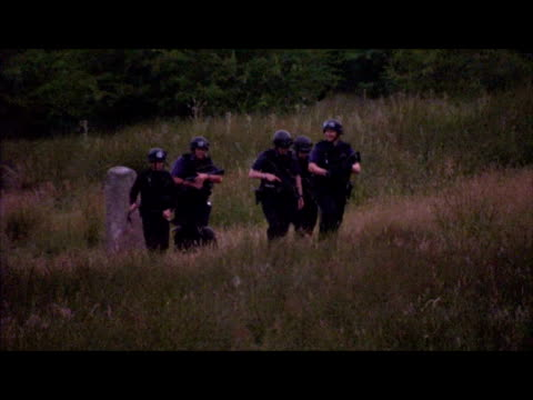vidéos et rushes de exterior shots at dusk of armed police officers and sniffers dogs patrolling searching rothbury woodland as the hunt for raoul moat continues armed... - nord est de l'angleterre