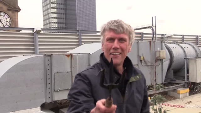 exterior shots bez aka mark berry, former member of the band happy mondays gardening in roof garden and breaks gardening fork whilst attempting to... - garden fork stock videos & royalty-free footage