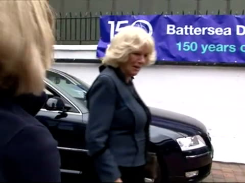 exterior shots camilla duchess of cornwall arriving at battersea dogs home the duchess of cornwall opens the new cattery at battersea dogs cats home... - cornwall england stock videos and b-roll footage