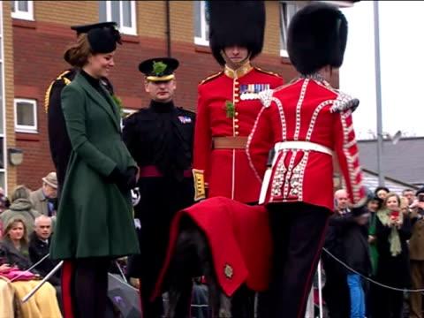vidéos et rushes de exterior shots catherine duchess of cambridge presents traditional shamrock to dog during the irish guards' st patrick's day parade duke duchess of... - mons barracks