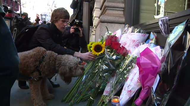 manhattan exterior shots fan laying sunflower among floral tributes outside home of david bowie with press pach paking photos - monumento commemorativo temporaneo video stock e b–roll