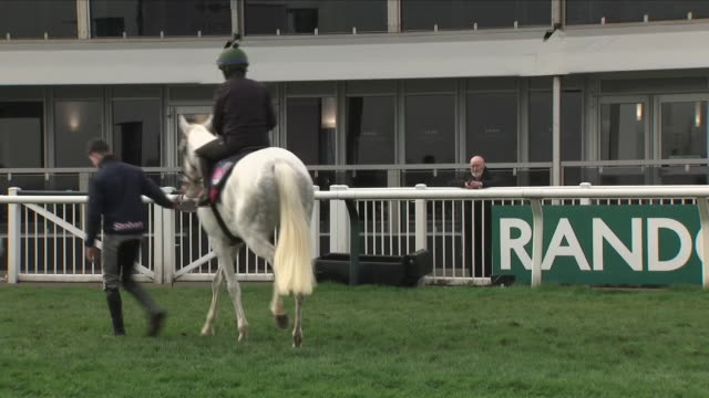 exterior shots grand national pre race practice horses and jockeys on april 14 2018 in aintree england - hooved animal stock videos and b-roll footage