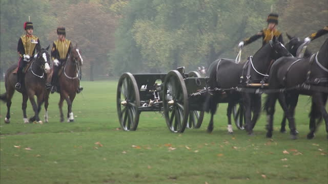 exterior shots her majesty the queen marks 70 years of the king's troop royal horse artillery. the queen steps out of car and watches horse parade... - king royal person stock videos & royalty-free footage