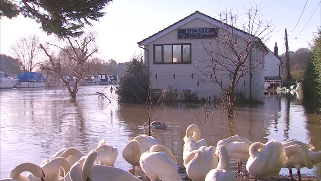 Exterior shots of a house pub underground walkway submerged in flood waters from the Winter storms Houses Businesses Submerged in Floods on December...
