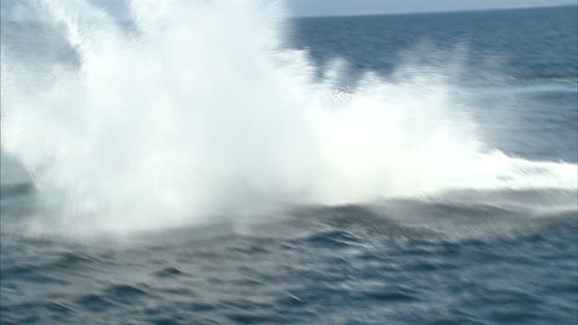 exterior shots of a humpback whale swimming at sea jumping out of the water in a splash of spray off the santa barbara coastline from a whale... - buckelwal stock-videos und b-roll-filmmaterial