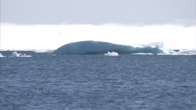 exterior shots of a iceberg and drift ice in the arctic and northwest passage. on august 25, 2007 in cambridge bay, canada. - glacier stock videos & royalty-free footage