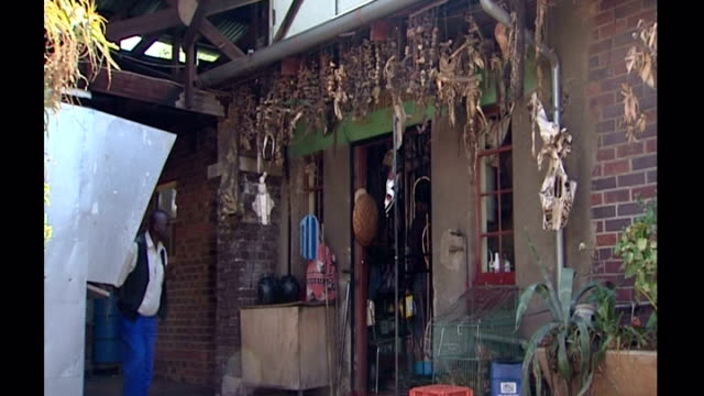 stockvideo's en b-roll-footage met exterior shots of a muti traditional medicine shop with various dried exotic remedies hung on display outside on october 23 2006 in johannesburg... - gauteng provincie