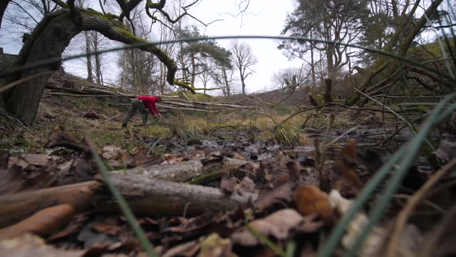exterior shots of a national trust worker moving tree logs at lyme park as part of flood prevention measures on 5 march 2021 in disley, united kingdom - 英チェシャー州点の映像素材/bロール