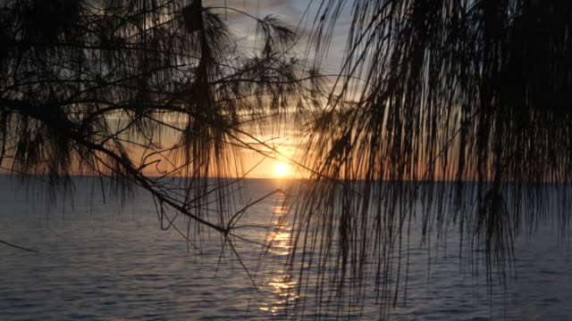 vídeos de stock, filmes e b-roll de exterior shots of a sunset from the aldabra atoll with palm trees rocky shore line and the sun sinking into the indian ocean on 21 march 2019 in... - oceano índico