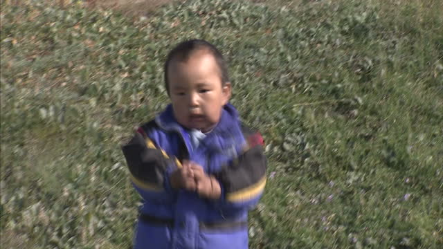 exterior shots of an inuit child running towards camera and falling over before being led away by parent on august 25 2007 in cambridge bay canada - inuit stock videos & royalty-free footage