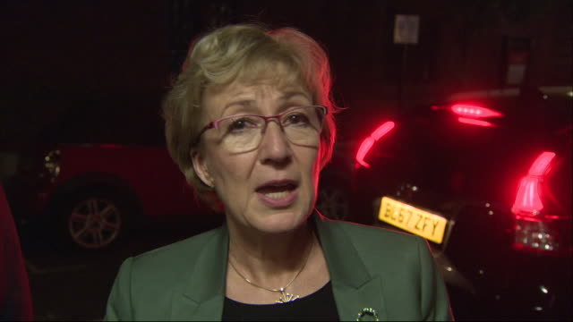 exterior shots of andrea leadsom mp outgoing leader of the house making a brief statement to press on her resignation on 22 may 2019 in london united... - andrea leadsom stock-videos und b-roll-filmmaterial