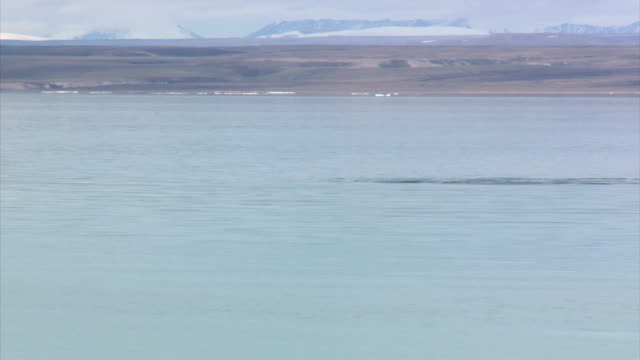exterior shots of arctic scenery from a boat off the coast of baffin island near pond inlet with views towards the mountains and glaciers of bylot... - surfacing stock videos and b-roll footage