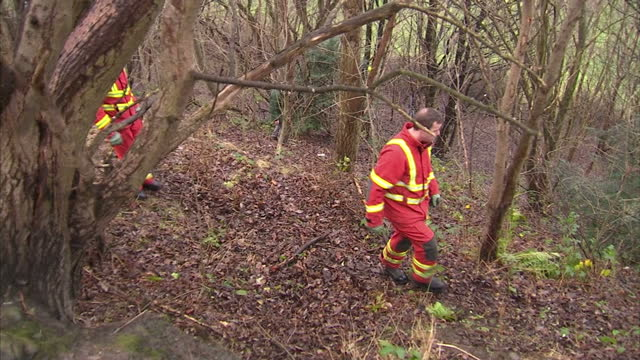 exterior shots of both official and unofficial search parties looking for missing 3 year old mikaeel kular woodland search hunt for mikaeel kular on... - missing persons stock videos & royalty-free footage