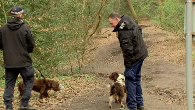 exterior shots of british police officers searching epping forrest looking for richard okorogheye on 1st april 2021 enfield, united kingdom. - searching stock videos & royalty-free footage