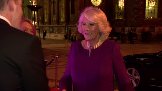 exterior shots of camilla duchess of cornwall arriving on the red carpet at the man booker prize on october 25 2016 in london england - man booker prize stock videos & royalty-free footage