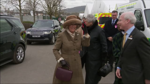 exterior shots of camilla the duchess of cornwall arriving and meeting various people and walk along to the venue as she arrives for the cheltenham... - cheltenham racecourse stock videos and b-roll footage
