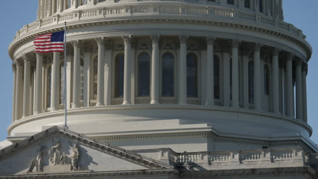 exterior shots of capitol hill building, us senate, statue of freedom, people outside capitol hill, american flag in front of capitol building and... - 連邦議会点の映像素材/bロール