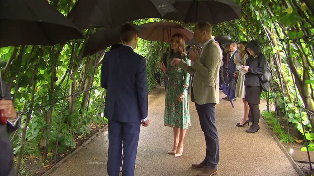 exterior shots of catherine duchess of cambridge prince william duke of cambridge and prince harry being shown round commemorative garden that has... - herzog von cambridge stock-videos und b-roll-filmmaterial
