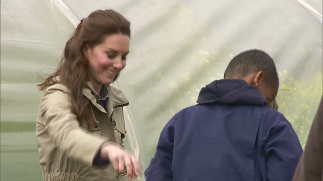 exterior shots of catherine duchess of cambridge visiting wick court one of the farms taking part in the farms for city children programme at... - herb garden stock videos & royalty-free footage