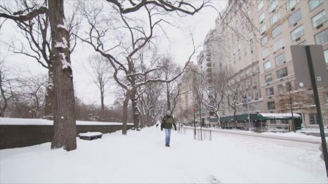 exterior shots of central park during a blizzard in new york city on , wide shot of pedestrians walking next to central park, wide shot of a fountain... - boulevard video stock e b–roll